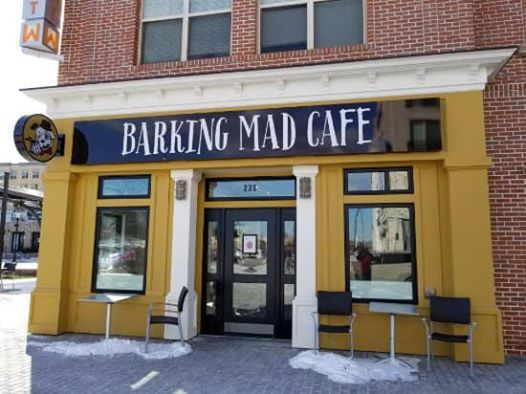 Barking Mad Cafe Happy Hour